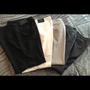 5 Pair JC Penney Worthington Dress pant SZ 16P NWT